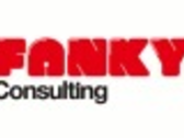 FANKY CONSULTING